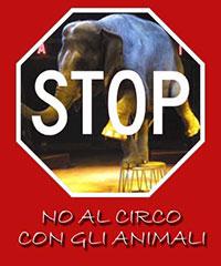 stop al circo con gli animali